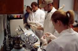 Human Exercise Physiology Lab | Laboratories | Department