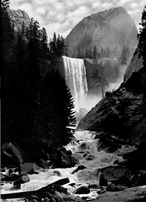 """The Four Seasons in Yosemite National Park (1938), """"Spring"""
