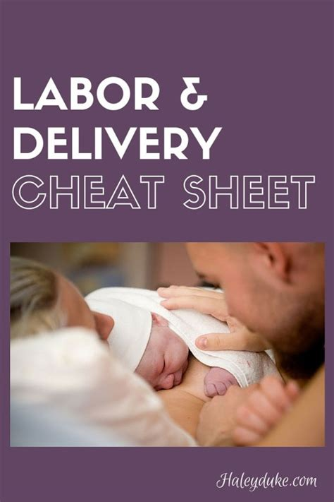 Labor & Delivery Cheat Sheet for Spouses – Haley Duke