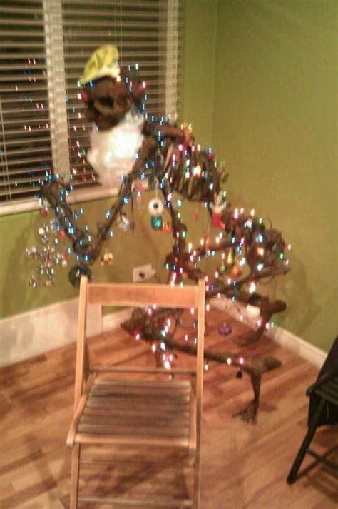 So Inappropriate Yet So Funny Christmas Decorations